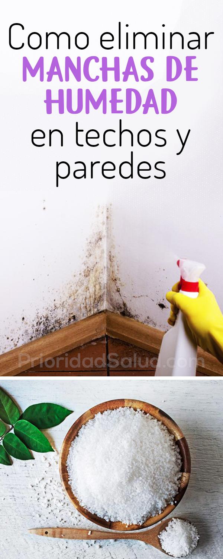 Como eliminar moho, manchas de humedad en techos y paredes